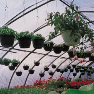 plasticos-para-invernadero-2