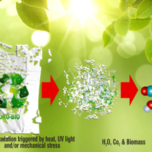 bolsas-biodegradables-12