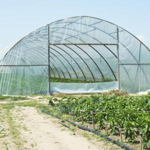 plasticos-para-invernadero-9